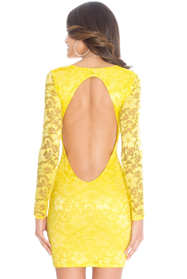 DR545_yellow_back_l